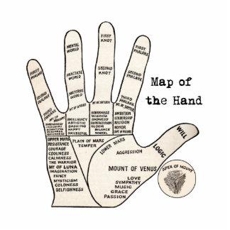 Mapa de la mano de la quiromancía de la lectura de esculturas fotograficas