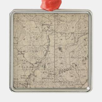 Mapa de la sección de T1617S R2829E el condado de Adorno Navideño Cuadrado De Metal
