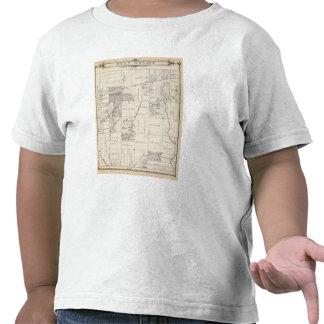 Mapa de la sección del NE 1 4 el condado de Tulare Camisetas