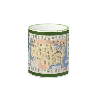 Mapa de la taza herbaria de los remedios