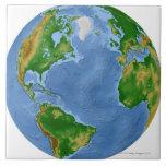 Mapa de la vegetación de Atlántico Norte Azulejo Cuadrado Grande