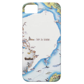 Mapa del ártico iPhone 5 carcasas