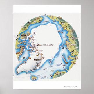 Mapa del ártico poster