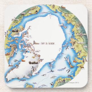 Mapa del ártico posavasos de bebida
