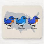Mapa del Bluebird Tapete De Raton