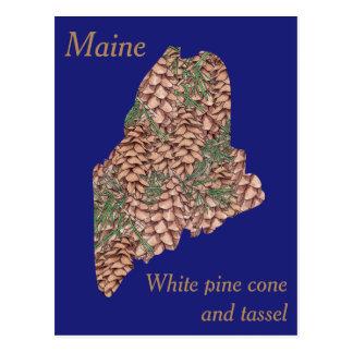 Mapa del collage de la flor de estado de Maine Postal