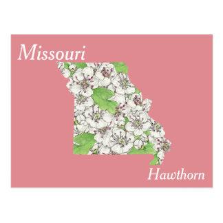 Mapa del collage de la flor de estado de Missouri Postal
