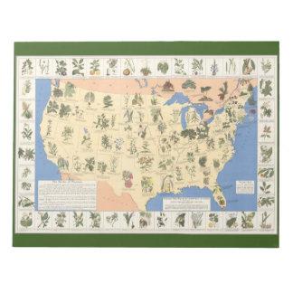 Mapa del cuaderno herbario de los remedios libretas para notas