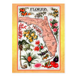 Mapa del estado de la Florida (reimpresión del vin Postal