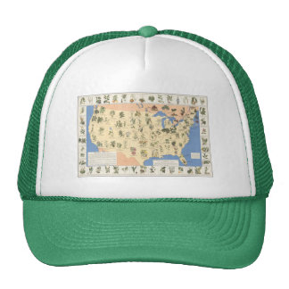 Mapa del gorra herbario de los remedios