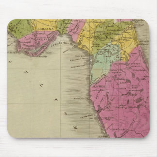 Mapa del territorio de la Florida Alfombrillas De Raton