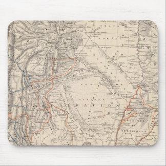 Mapa del viaje del Dr V Martin de Moussy Tapetes De Ratones