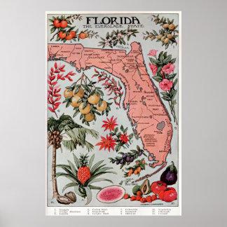 Mapa del vintage de la Florida (1917) Póster