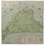 Mapa del vintage de Marthas Vineyard (1913) Servilleta Imprimida