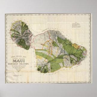 Mapa del vintage de Maui Island (1906) Póster