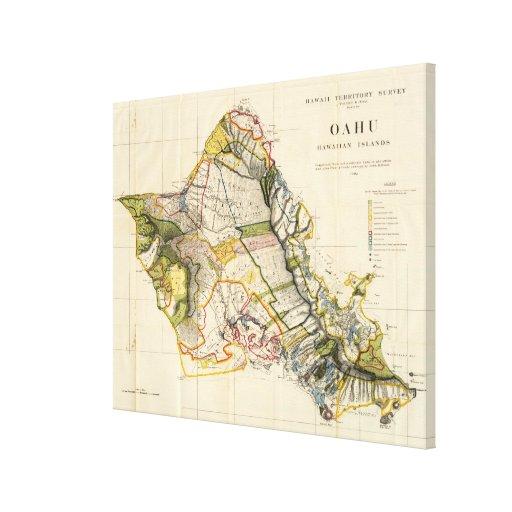 Mapa del vintage de Oahu Hawaii (1906) Impresión En Lona Estirada