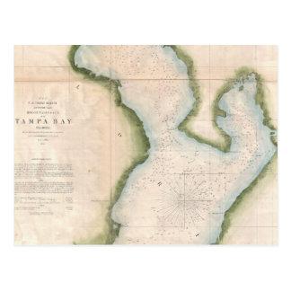 Mapa del vintage de Tampa Bay costera (1855) Tarjetas Postales
