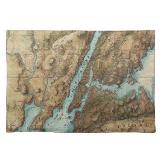 Mapa del vintage del puerto de Nueva York (1864) Manteles Individuales