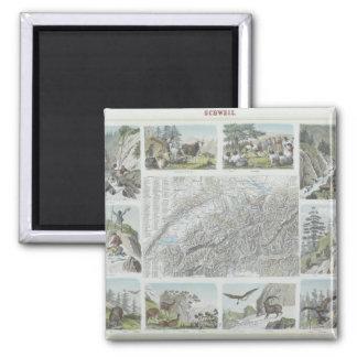 Mapa e ilustraciones de las montañas suizas imán cuadrado