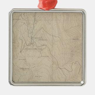 Mapa especial del atlas del parque de Tourtelotte Adorno Cuadrado Plateado