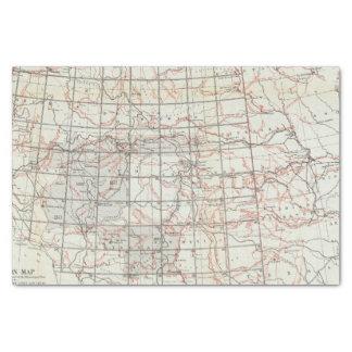 Mapa esquelético papel de seda pequeño