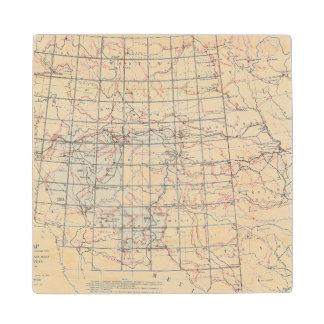 Mapa esquelético posavasos de madera