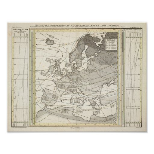 Mapa estadístico geográfico botánico de Europa Póster