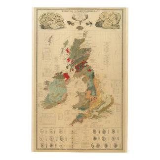 Mapa geológico, paleontológico compuesto cuadros de madera