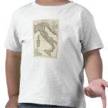 Mapa italiano clásico camisetas