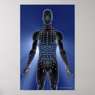 Mapa ligero de los puntos de la acupuntura póster