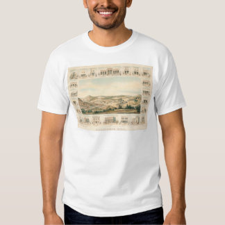 Mapa panorámico 1855 (1107A) de la colina de Camisas