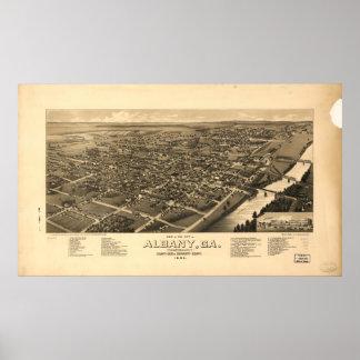 Mapa panorámico antiguo de Albany Georgia 1885 Posters