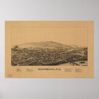 Mapa panorámico antiguo de Bainbridge Nueva York 1 Póster