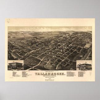 Mapa panorámico antiguo de Tallahassee la Florida  Póster