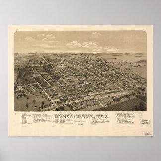 Mapa panorámico antiguo de Tejas 1886 de la arbole Póster
