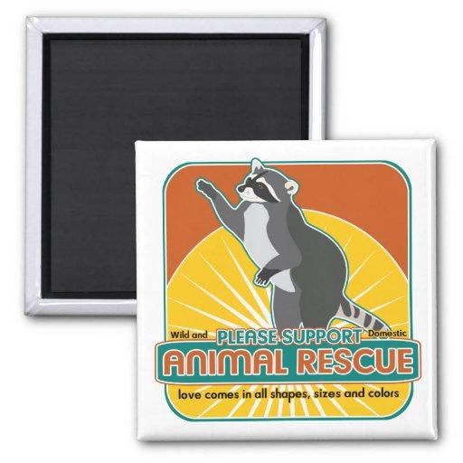 Mapache animal del rescate imán cuadrado
