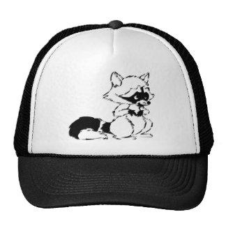 Mapache astuto gorras