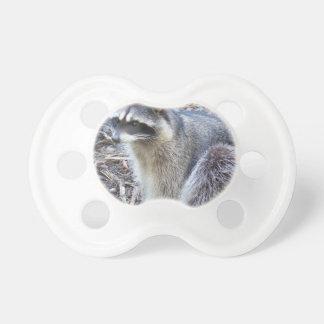 Mapache Chupete De Bebé