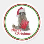 Mapache del bandido del navidad con el presente pegatina redonda