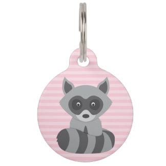 Mapache del bebé identificador para mascota