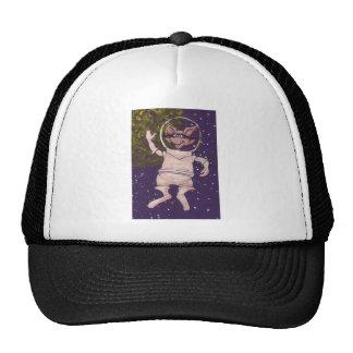 Mapache del espacio gorras