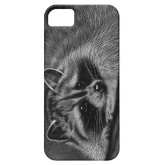 Mapache iPhone 5 Carcasas