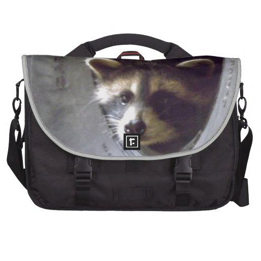 mapache rescatado y lanzado bolsas de ordenador