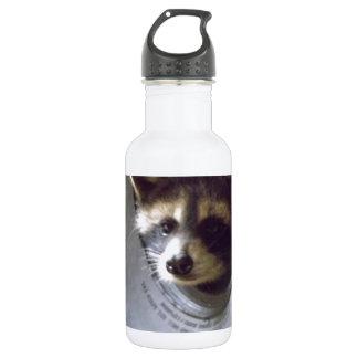 mapache rescatado y lanzado botella de agua