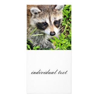 mapache tarjeta fotografica personalizada