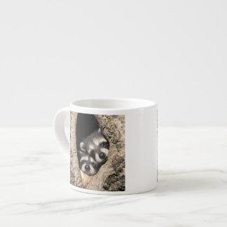 Mapaches del bebé en Procyon de la cavidad del Taza De Espresso