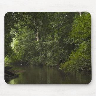 Mapari River, Mapari Rupununi, Guyana. Mouse Pad
