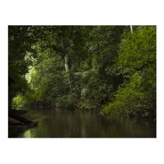 Mapari River, Mapari Rupununi, Guyana. Postcard