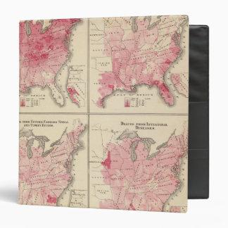 Mapas de la vitalidad de Estados Unidos