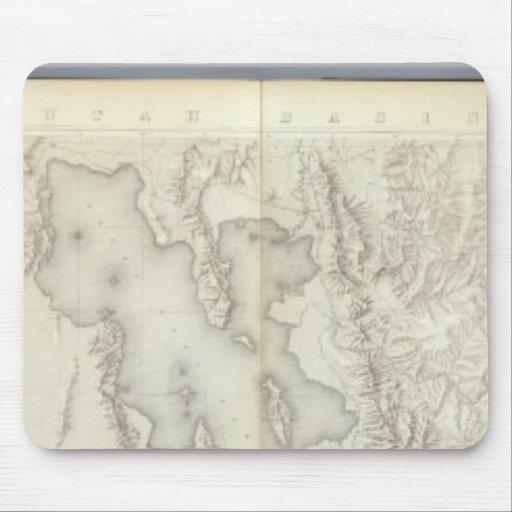Mapas topográficos compuestos IV Tapete De Ratón